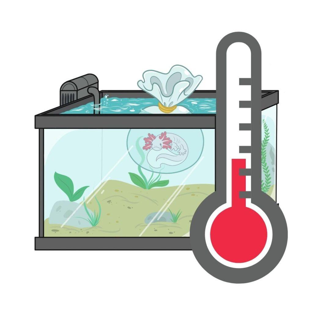 axolotl tempertura