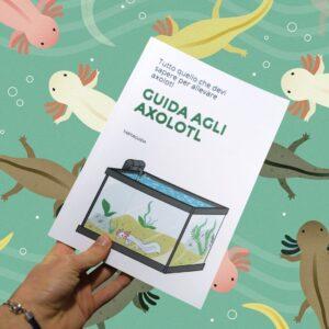 axolotl per principianti